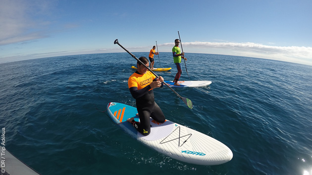 cours de stand up paddle à Fuerteventura