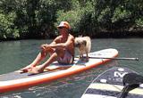 Du Stand Up Paddle en Guadeloupe  - voyages adékua