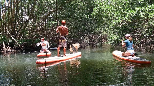 Un séjour en Guadeloupe parfait pour découvrir le Stand Up Paddle