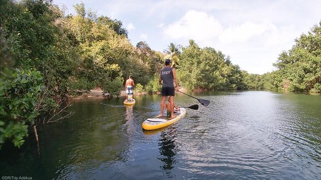 Un séjour Stand Up Paddle de rêve aux Antilles sur l'île de la Guadeloupe