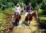 Vagues, initiation, balades, on peut tout faire en SUP à Tibau do Sul - voyages adékua