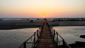 Un séjour réussi en famille à Goa